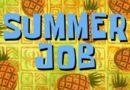 Summer Job Opportunity — Program Assistant